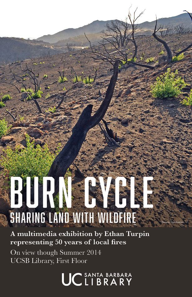 burn cycle poster