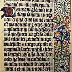 Bible. [Illuminated manuscript of the Latin Bible] [S.l.: s.n., ca. 1250?] Speci