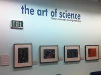 The Art of Science Gallery View