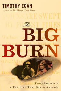 Big Burn Cover