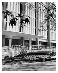 Photograph of 8-story tower, 1971