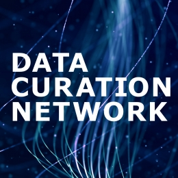 Data Curation Network logo