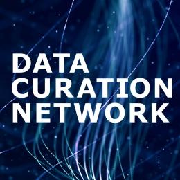 Data Curation Network logo
