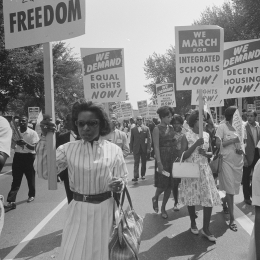 March on Washington protesters.