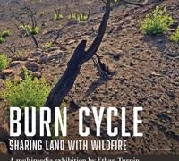 Burn Cycle poster
