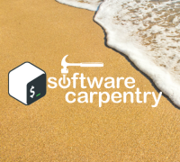 Software Carpentry Logo of hammer with beach in background