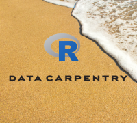 Data Carpentry Logo of R logo with beach in background